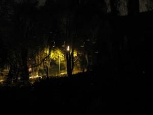 IMG_night light