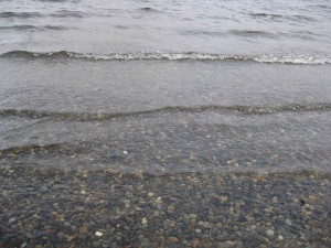 lake washington water 004